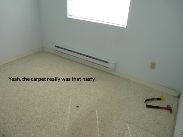 Removing the Carpet